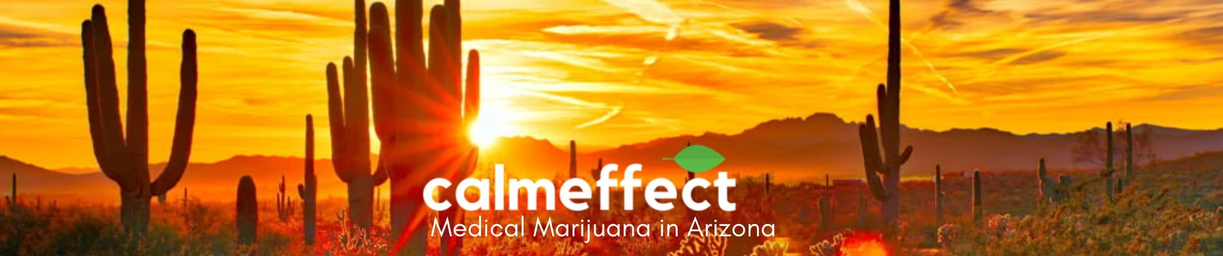 Medical Marijuana in Arizona